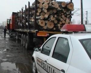 transport-ilegal-lemne-bucium