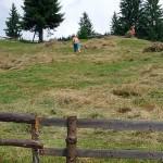 În zona montană, trei din cinci fermieri au peste 60 de ani şi numai 8 la sută sunt tineri