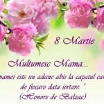 MESAJE de ziua MAMEI, 8 MARTIE 2015. Ce urări, SMS-uri şi felicitări emoţionante îi poţi transmite mamei tale | abrudinfo.ro