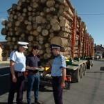 Tineri din județul Alba care transportau ilegal material lemnos pe DN 74, dinspre Abrud către Brad, sancționați de polițiștii hunedoreni