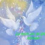 MESAJE de SFANTUL NICOLAE 2015. Idei de URARI şi FELICITARI pe care le poți trimite celor care își sărbătoresc onomastica | abrudinfo.ro