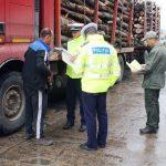Bărbat de 57 de ani surprins de polițiștii din Ciuruleasa în timp ce transporta 12 metri cubi de material lemnos fără documente de proveniență