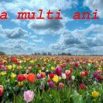Nume de femei și bărbați care se sărbătoresc de Florii | abrudinfo.ro