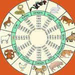 Horoscop CHINEZESC 2018. Ce aduce Anul Câinelui de Pământ pentru toate zodiile | abrudinfo.ro