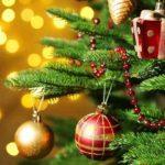 MESAJE de Crăciun fericit! Urări și felicitări pe care le poți trimite celor dragi | abrudinfo.ro